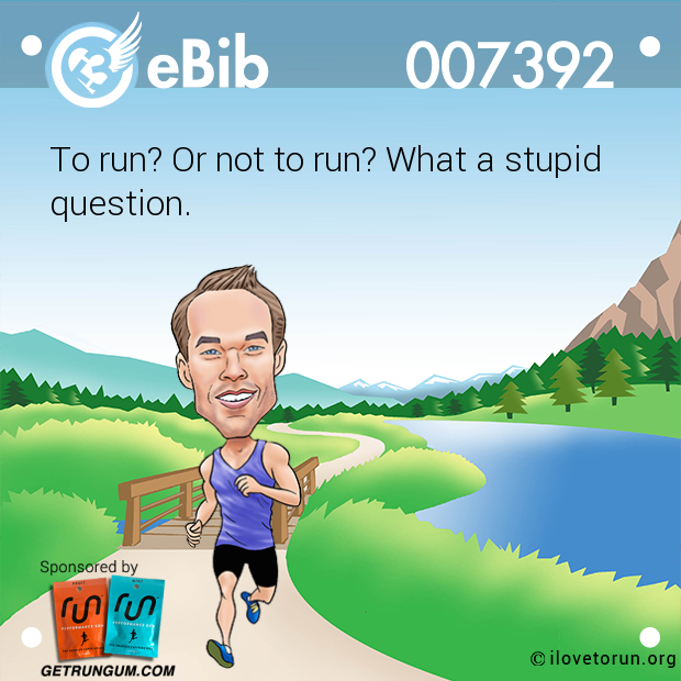 To run? Or not to run? What a stupid