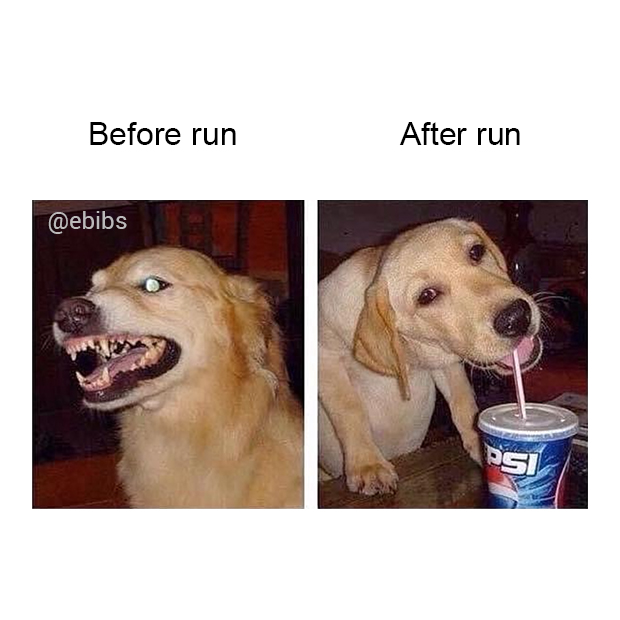 Before and after run